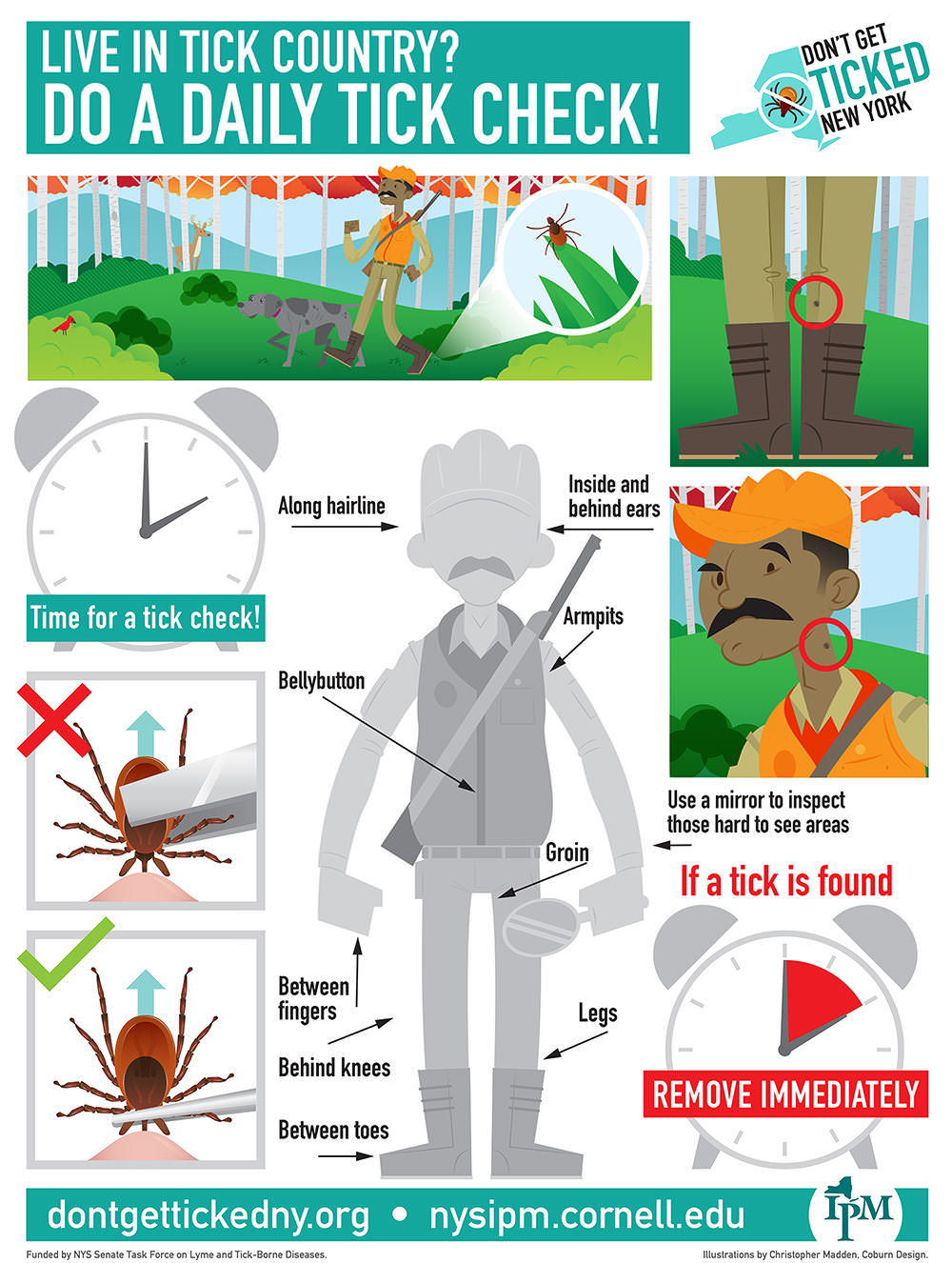 Tick Check Guide