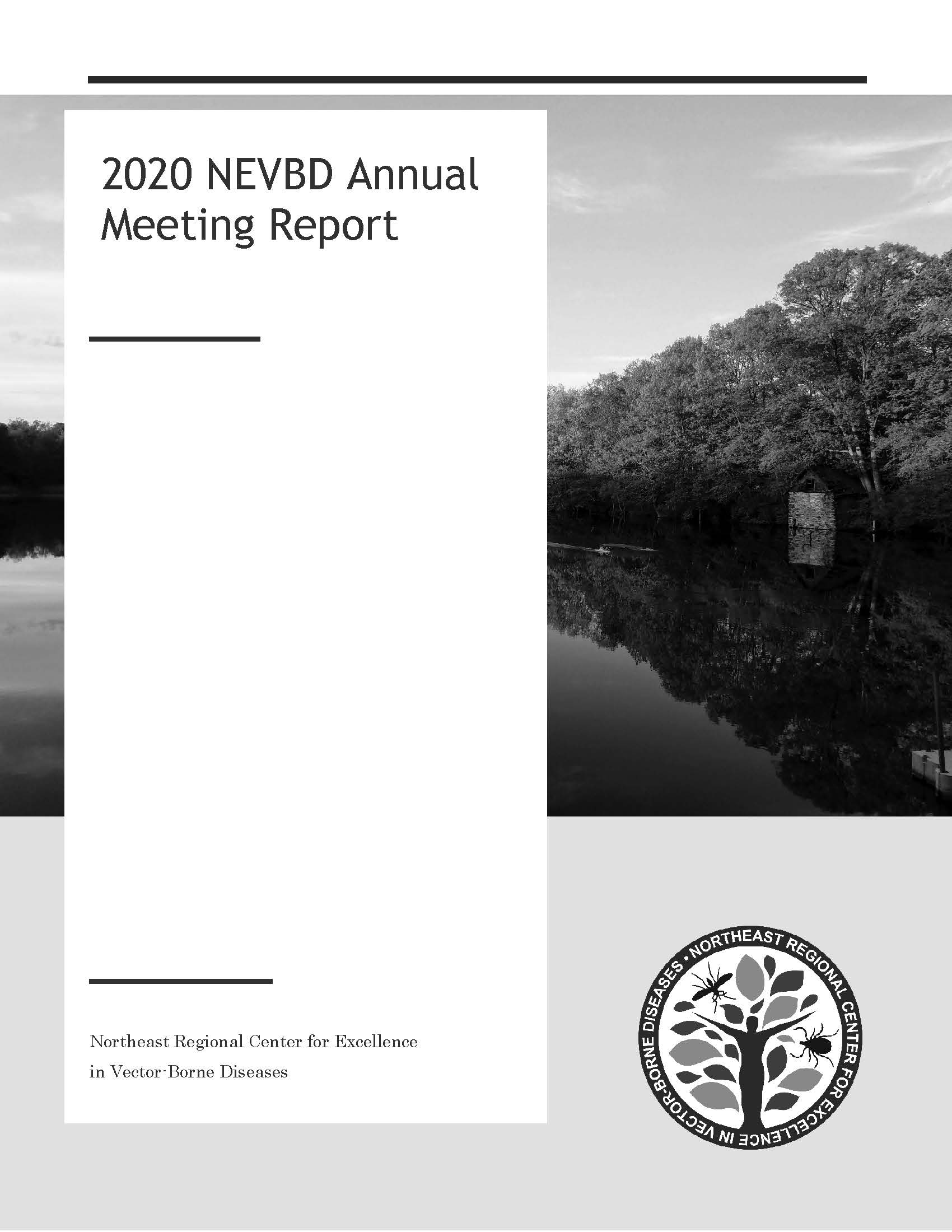 2020 Annual Meeting Report