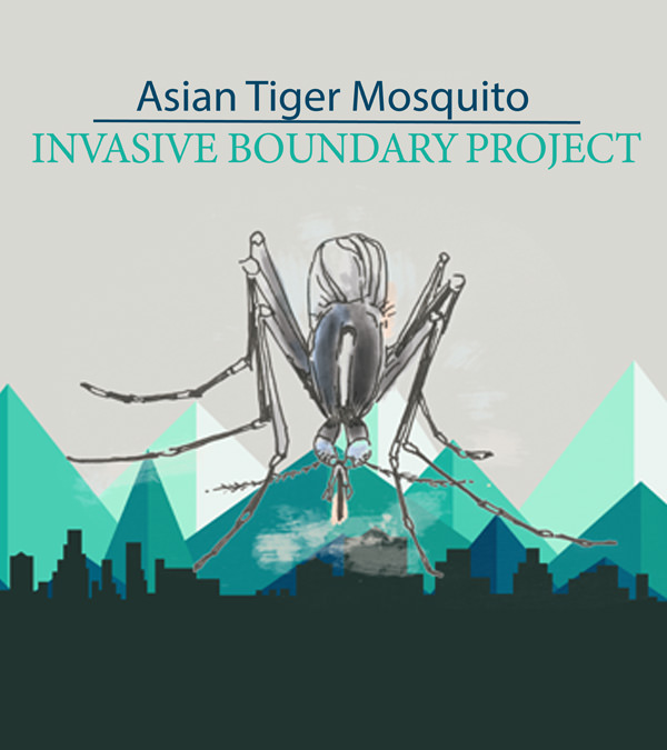 Asian tiger mosquito invasive boundary project logo